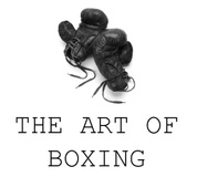 The Art of Boxing TRAINING Studio