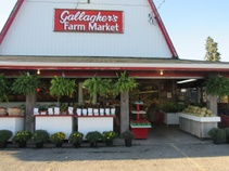 Gallagher's Farm Market
