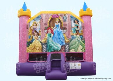 princess inflatable bounce house  noblesville Indianapolis westfield fishers cicero carmel