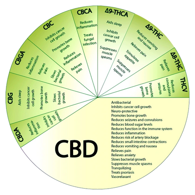 The CBD Pie Chart for Reference