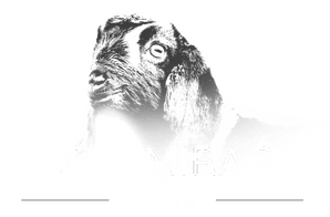 ​​​GOD'S MIRACLE FARM