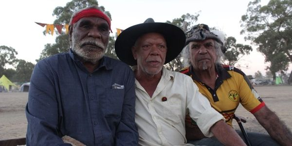 Aboriginal Elders Making Peasce Frontier Wars Reconciliation Sturt Desert Pea