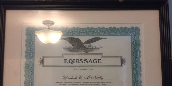 equissage Massage School Equine Massage ,horse massage, pet massage, light therapy