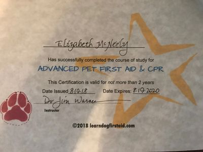 Advanced First aId , Professional Dog Grooming Paws and pamper IPG
