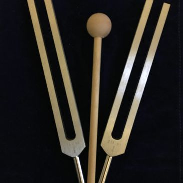 Pair 5 Tuning Forks