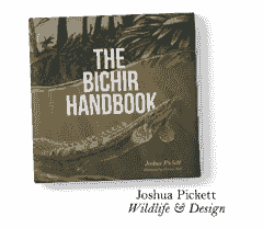 The Bichir Handbook