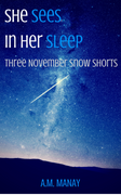 She Sees in Her Sleep Three November Snow Short Stories