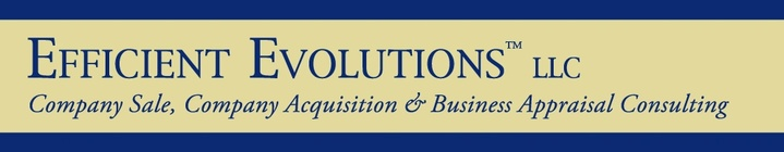 Efficient Evolutions LLC