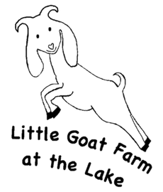 Little Goat Farm At The Lake