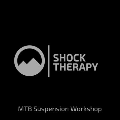 How Shock Therapy Is Saving Some >> Shock Therapy Big Mountain