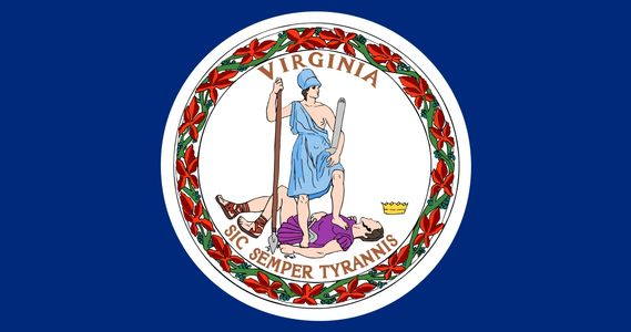 Virginia state flag to represent that we are local, and we are with the state board for contractors.