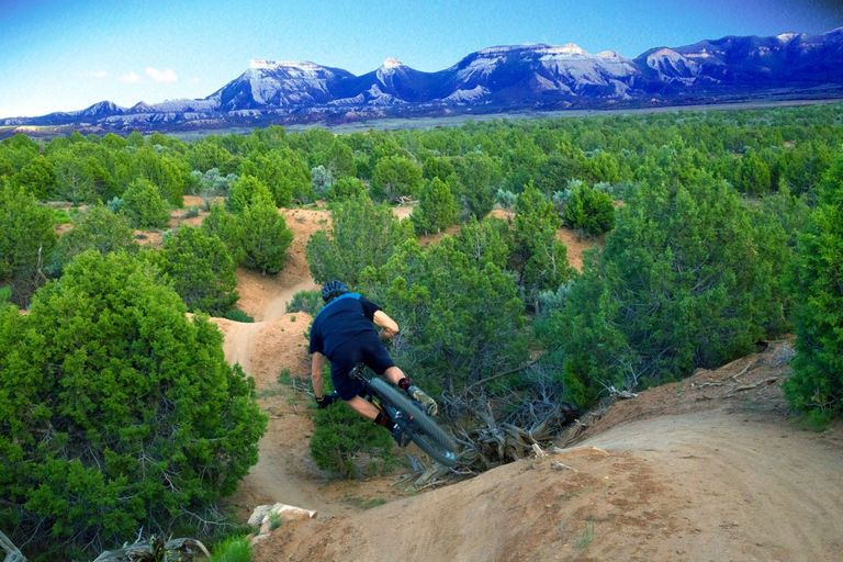 The rib cage at Phil's World mountain bike trail system in Cortez Colorado