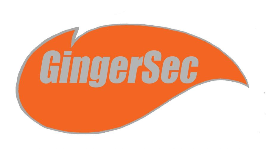 GingerSec was formed from the premise that there is a need for training in the security industry.