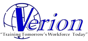 Verion Training System
