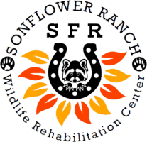 Sonflower Ranch Wildlife  Rehab Center