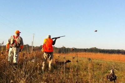 "Little ""q"" Ranch Guided Quail Hunts"