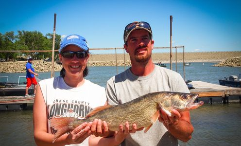Woman (left) and Man (right) holding walleye.  Image provided by Nichole's Imaging.