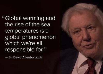 The rise of the sea temperatures is a global phenomenon which we're all responsible for