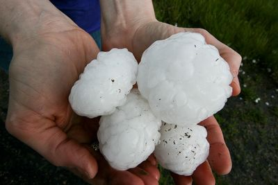Large hail can cause sever roof damage.  Contact us for a free Roof Inspection