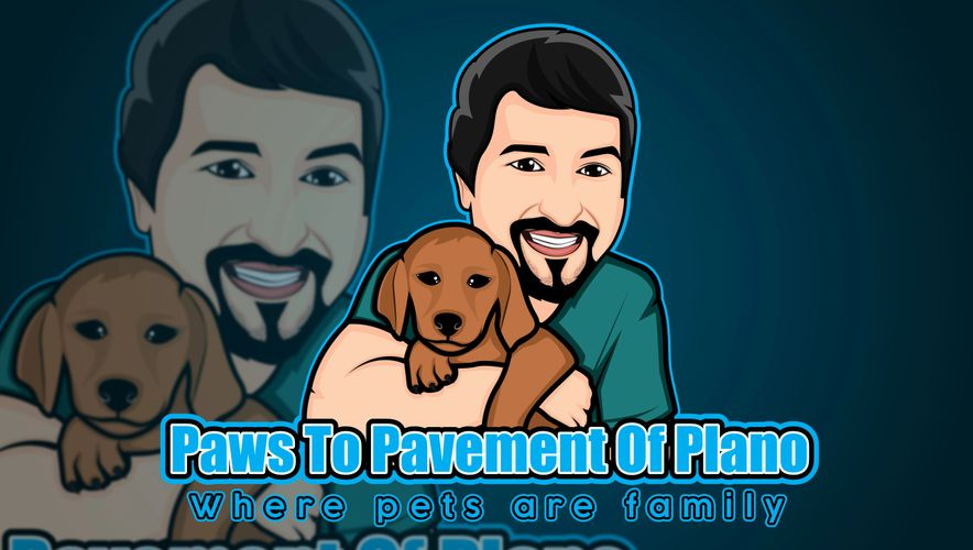 Paws to Pavement, Dog walking, Plano, Murphy, Wylie, Pet Sitting, Pet sitters, Leash Training
