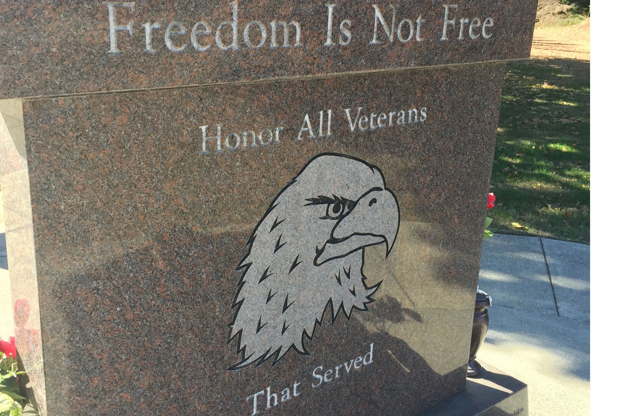Freedom is Not Free Honor All Veterans Eagle