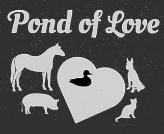Pond of Love