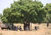 Our first bike centre in Abim, under a tree.