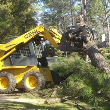 Gehl, bobcat skid steer loading felled tree and cleaning tree removal debris, cutting and trimming