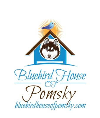 Bluebird House of Pomsky