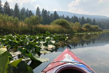 Kayak Tours at Malone Springs and the Klamath Marsh Canoe Trail