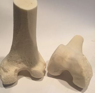 3D printed femur made with FibreTuff