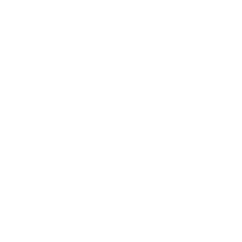 Soul Fire Brewing Company