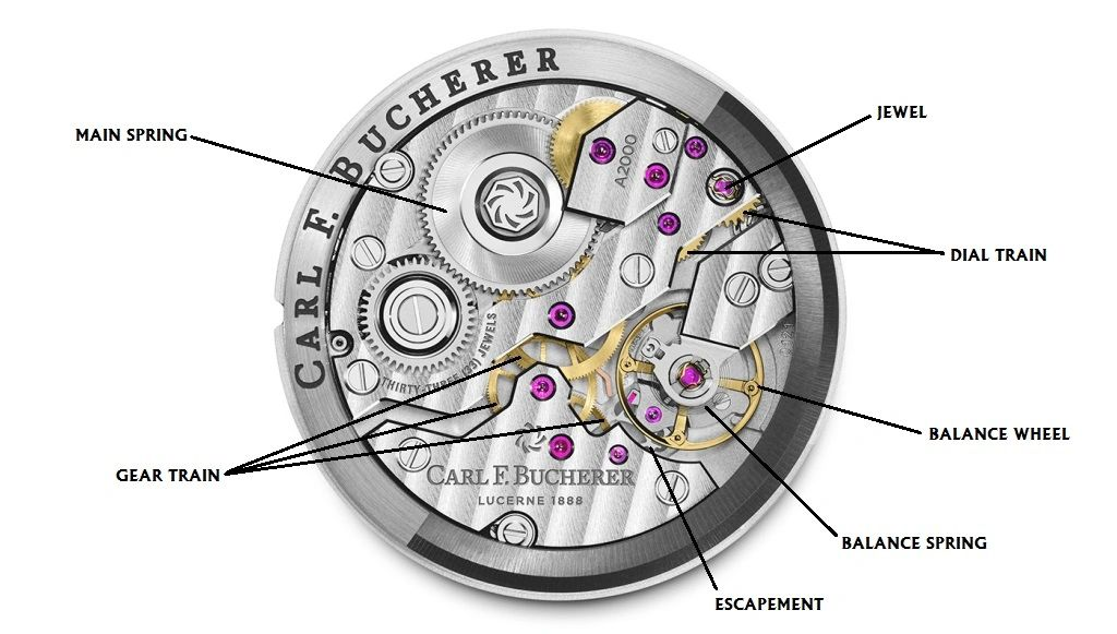 Anatomy of a Watch 101: A Beginners Guide To Watch Terminology on