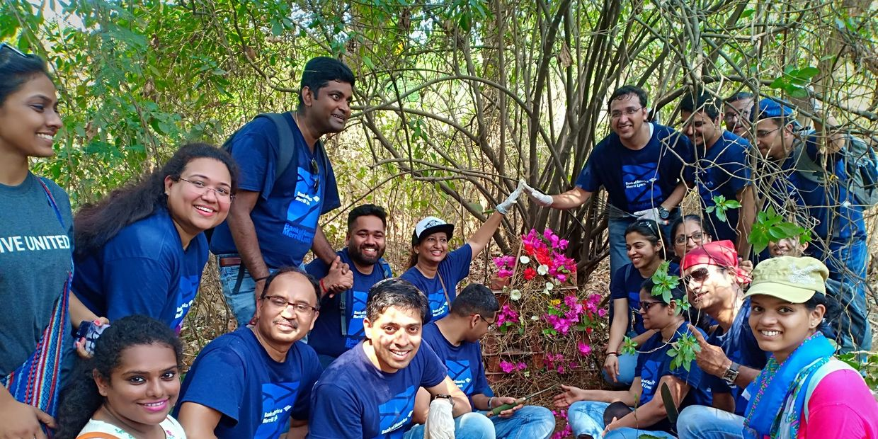 Employees of Bank of America built a Bug Hotel in Aarey Colony in Mumbai