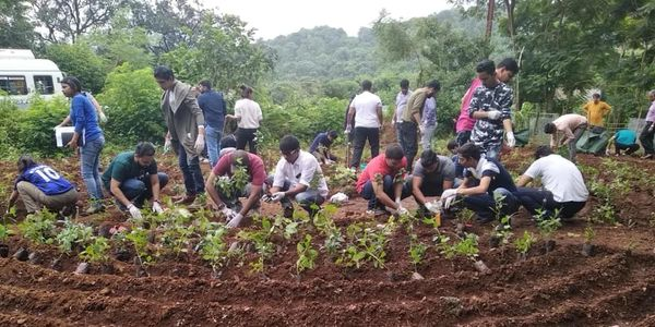 Employees of DCB Bank setting up Butterfly Habitat at Ysusuf Meherali Centre in Tara, Maharashtra.