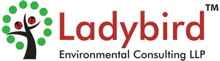 Ladybird Environmental Consulting LLP