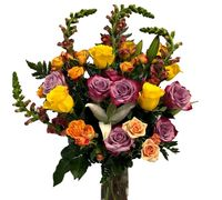 flower delivery order flowers florist roses presents gifts tropical roses flower shop flower bouquet