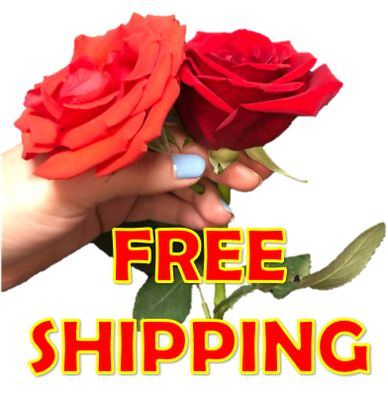 free shipping flowers florist delivery roses arrangements bouquets