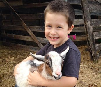 Kids love to play with baby goats at Gobble-Berry Farmstead.
