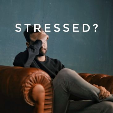 stressed? rinz. playlist curator chillhop lofi chillout music amsterdam spotify music influencer