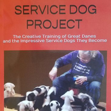 The Service Dog Project donates creatively educated Great Danes to Veterans, First Responders and t