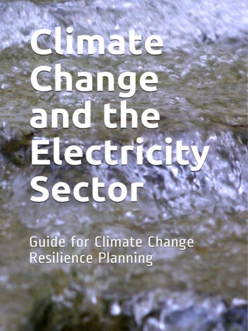 Climate Change and the Electricity Sector