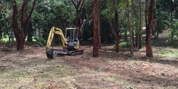 Land clearing is a specialty for Jeff Pearce Tree Services which includes tree removal and stump grinding or stump removal.