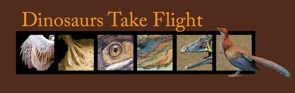 Dinosaurs Take Flight logo with archaeopteryx macro images.