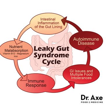 Leaky Gut and Sonic Detoz