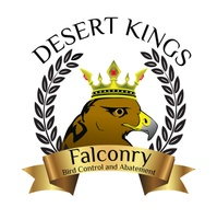 Desert Kings Falconry