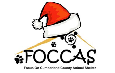 Focus On Cumberland County Animal Shelter
