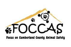 Focus On Cumberland County Animal Safety