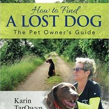 How to Find a Lost Dog book