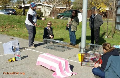 Group of volunteers learning how to trap cats